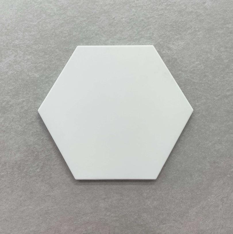 White Matt Hexagon Spanish Porcelain Tile 3912
