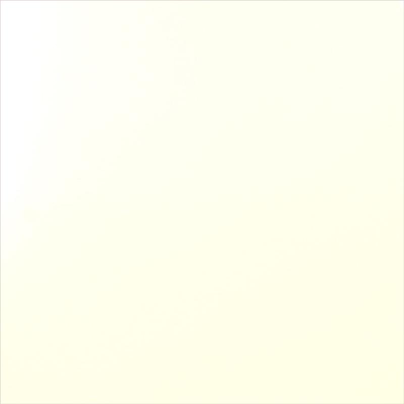 300x600mm Matt White Rectified Edge Wall Tile (#4037)