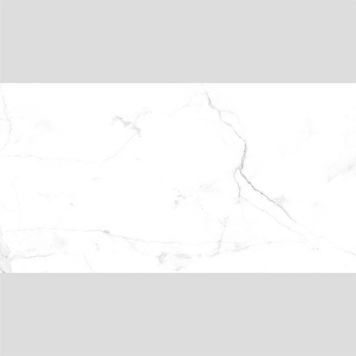 600x1200mm Carrara Look Matt Finish Porcelain Floor and Wall Tile (#6351)